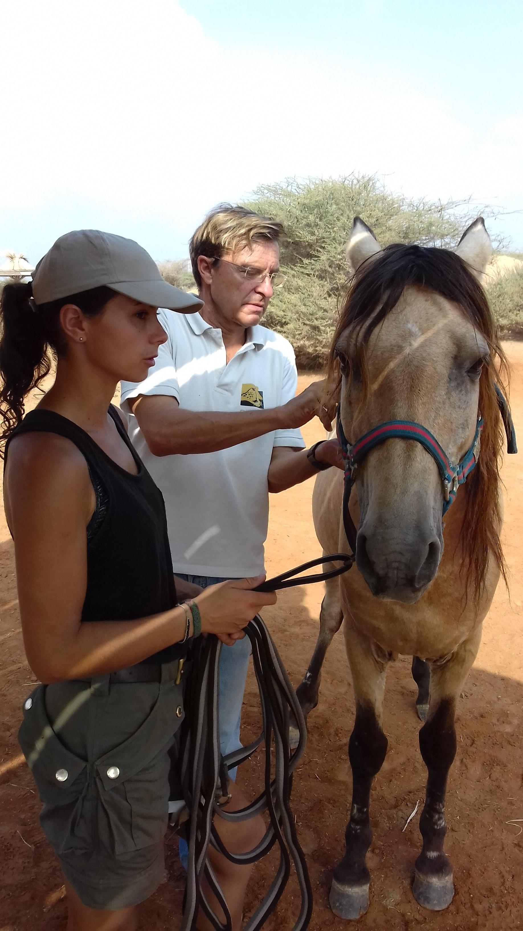 refuge decan cheval